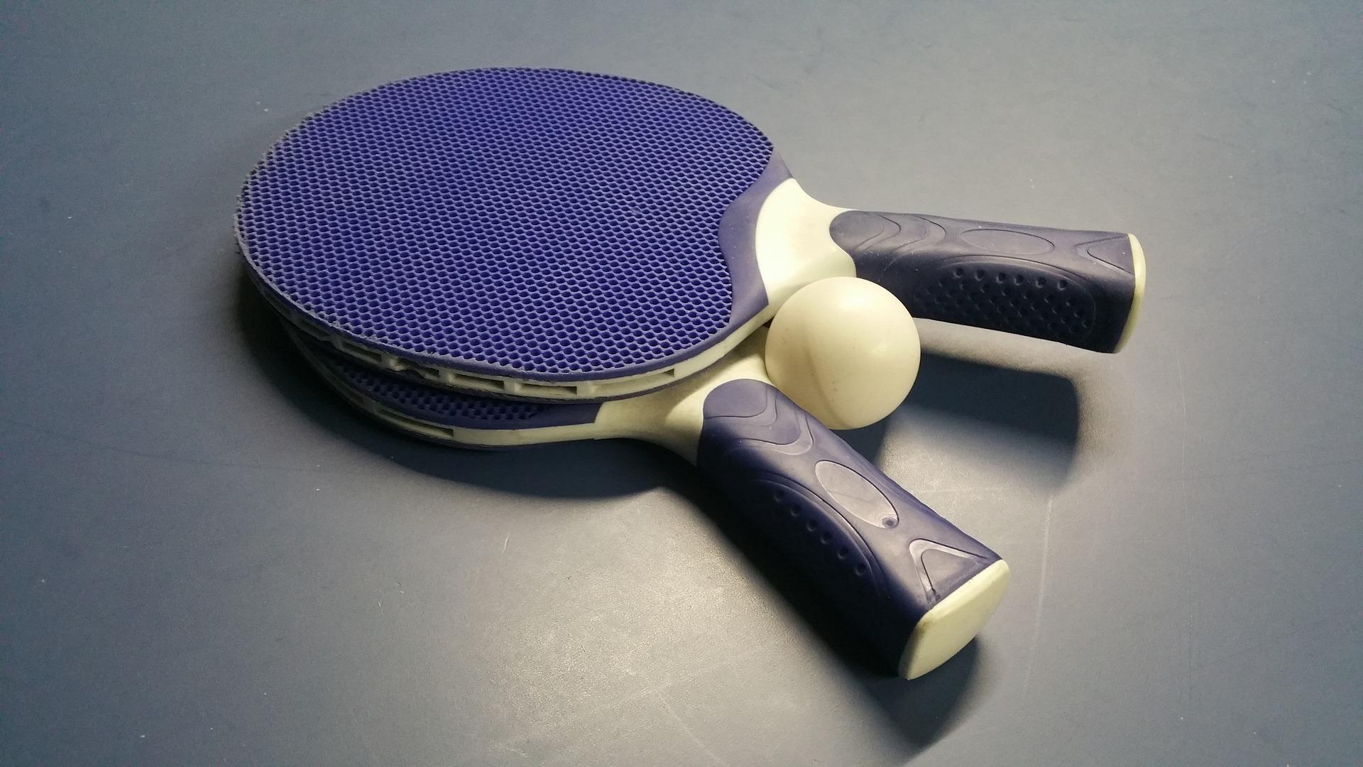 卓球 張本智和 学歴 頭いい